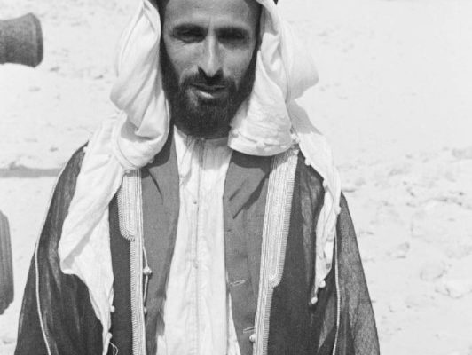Sheikh Shakhbut bin Sultan Al Nahyan